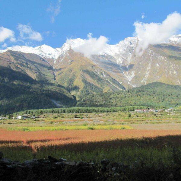 Wälder und Felder vor dem Annapurna-Massiv