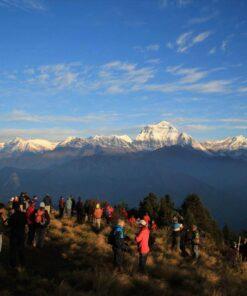 Viele Menschen stehen auf einem grasbewachsenen Abhang und schauen zu den schneebedeckten Gipfeln