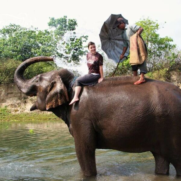 Frau wird von Elefant mit Wasser angespritzt