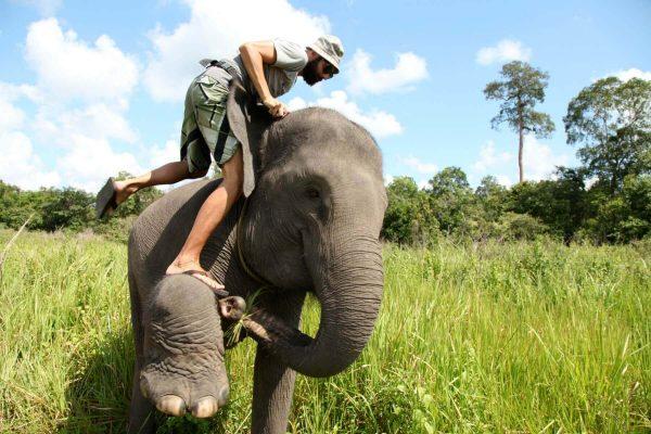 Mahout steigt auf einen Elefanten