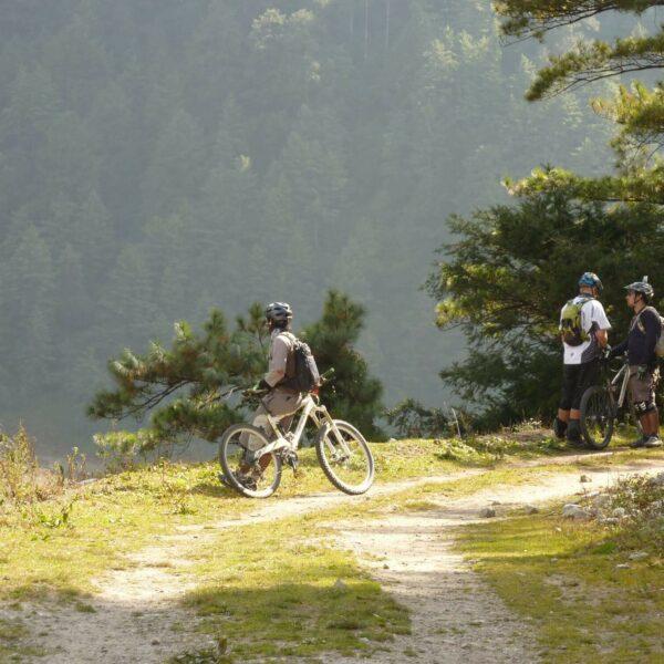 Drei Radfahrer halten am Weg an