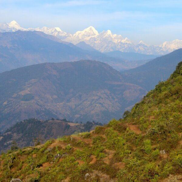 Blick auf Wälder und Gebirge mit Schnee