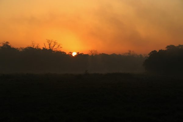 Sonnenuntergang im Nationalpark in Chitwan