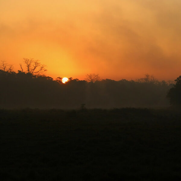 Sonnenuntergang im Nationalpark in Chitwan