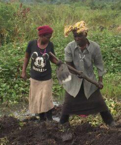 Bestellung des Farmlandes im Projektdorf