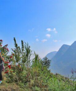 Reisende wandert in der Annapurna-Region in Nepal