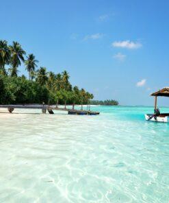 Türkisblaues Meer und Palmen auf den Malediven