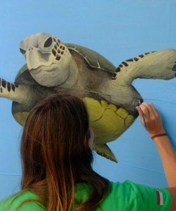 Volontärin zeichnet Meeresschildkröte an die Wand